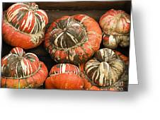 Gorgeous Gourds Greeting Card