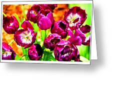 Gorgeous Tulips Greeting Card