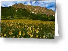 Gothic Mountain  Greeting Card