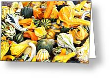Gourds And Squash Greeting Card