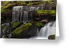 Gracefully Flowing Greeting Card