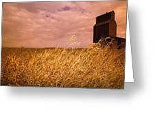 Grain Elevator And Crop Greeting Card