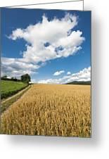 Grainfield Blue Sky Greeting Card