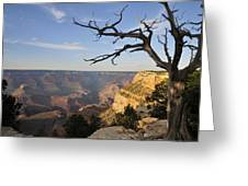 Grand Canyon 4 Greeting Card