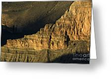 Grand Canyon Bathed In Light Greeting Card