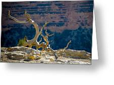 Grand Canyon Dead Tree Greeting Card