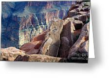 Grand Canyon Roxie Roller Greeting Card