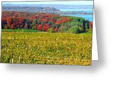 Grand Traverse Winery In Autumn Greeting Card