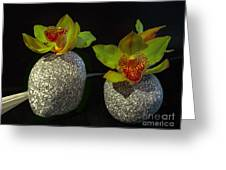 Granite Orchids Greeting Card