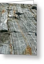 Granite With Quartz Inclusions Greeting Card