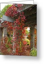 Grape Leaves On Columns Greeting Card