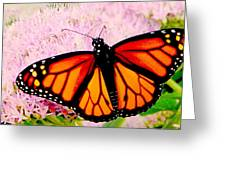 Graphic Monarch Greeting Card