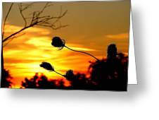 Grasping The Sunset Greeting Card