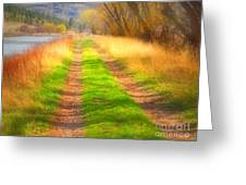 Grass And Shadows Greeting Card
