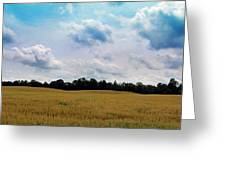 Grassy Country Fields Greeting Card