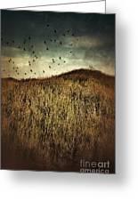 Grassy Hill Birds In Flight Greeting Card
