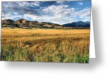 Grassy Plains And Ancient Dunes Greeting Card