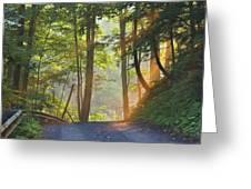 Gravel Road At Sunrise, Pelham, Ontario Greeting Card by Darwin Wiggett