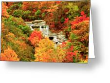 Graveyard Fields Lower Falls Greeting Card
