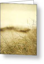 Gray Day At The Beach Greeting Card
