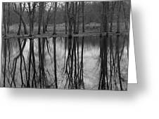 Gray Day Reflections Greeting Card