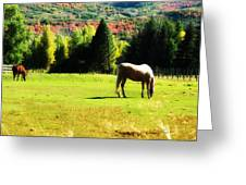 Grazing Autumn Greeting Card