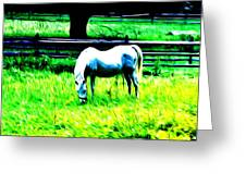 Grazing Horse Greeting Card by Bill Cannon