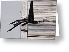 Great Blue Heron - Foundation Greeting Card