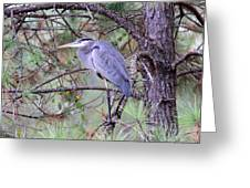 Great Blue Heron - Happy Place Greeting Card