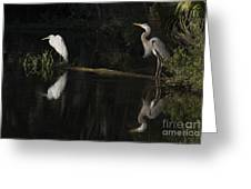 Great Blue Heron And Great Egret At Day's End Greeting Card
