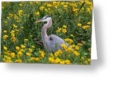 Great Blue Heron In The Flowers Greeting Card