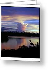 Great Blue Heron Sunset Greeting Card