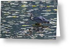 Great Blue Heron With Snack Greeting Card