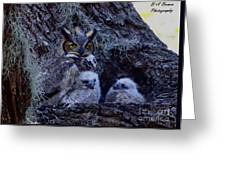 Great Horned Owl Twins Greeting Card
