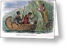 Great Lakes: Canoe, 19th C Greeting Card