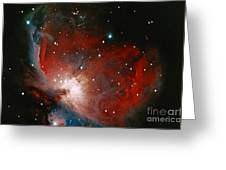 Great Nebula In Orion Greeting Card by Science Source