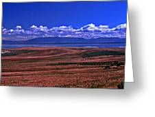 Great Salt Lake And Antelope Island Greeting Card