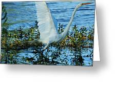 Great White And Blue Greeting Card