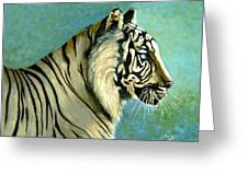 great White Hunter Greeting Card by Andrea Camp