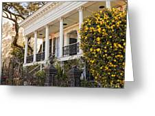 Greek Revival And The Tiny Pink Shoe - Garden District New Orleans Greeting Card
