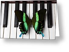 Green And Black Butterfly On Piano Keys Greeting Card