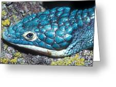 Green Arboreal Alligator Lizard Greeting Card