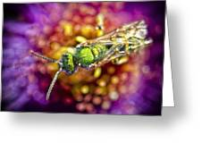 Green Bee Greeting Card