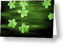 Green Cherry Blossom Greeting Card