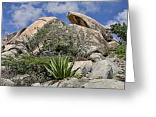 Green Desert With Large Bolders Greeting Card