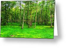 Green Floored Forest Greeting Card