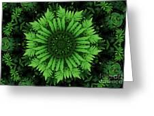 Green Forest Ferns Mandala - 2 Greeting Card