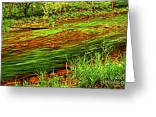 Green Forest River Greeting Card