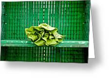 Green Greens Greeting Card