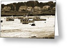 Green Harbor At Low Tide Greeting Card
